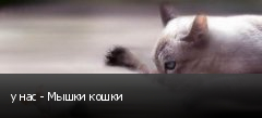 у нас - Мышки кошки