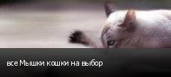 все Мышки кошки на выбор