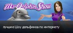 лучшие Шоу дельфинов по интернету