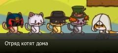 Отряд котят дома