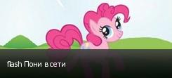 flash Пони в сети