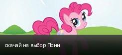 скачай на выбор Пони