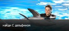 найди С дельфином