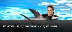 поиграть в С дельфином с друзьями
