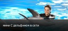 мини С дельфином в сети