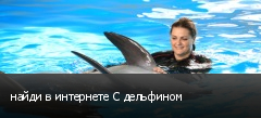 найди в интернете С дельфином