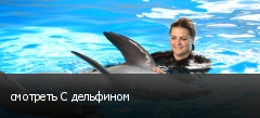 смотреть С дельфином