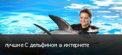 лучшие С дельфином в интернете
