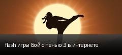flash игры Бой с тенью 3 в интернете