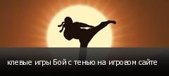 клевые игры Бой с тенью на игровом сайте