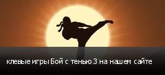 клевые игры Бой с тенью 3 на нашем сайте
