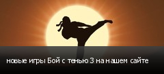 новые игры Бой с тенью 3 на нашем сайте