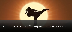 игры Бой с тенью 3 - играй на нашем сайте