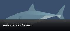 найти в сети Акулы