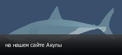 на нашем сайте Акулы