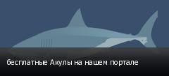 бесплатные Акулы на нашем портале