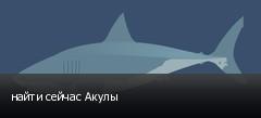 найти сейчас Акулы