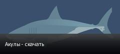Акулы - скачать