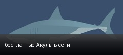 бесплатные Акулы в сети