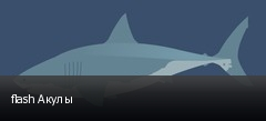 flash Акулы