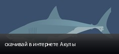 скачивай в интернете Акулы