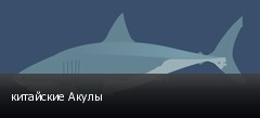 китайские Акулы