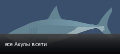 все Акулы в сети