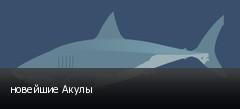 новейшие Акулы
