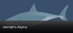 смотреть Акулы
