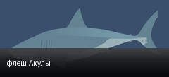 флеш Акулы