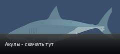 Акулы - скачать тут