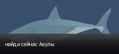 найди сейчас Акулы
