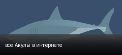 все Акулы в интернете