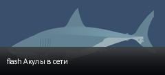 flash Акулы в сети
