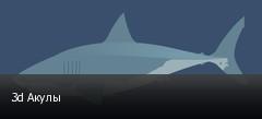 3d Акулы