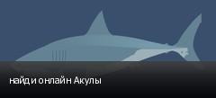 найди онлайн Акулы