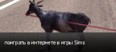 поиграть в интернете в игры Sims