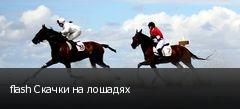 flash Скачки на лошадях