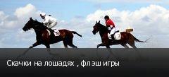 Скачки на лошадях , флэш игры