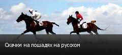 Скачки на лошадях на русском