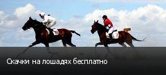 Скачки на лошадях бесплатно