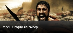 флеш Спарта на выбор