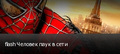 flash Человек паук в сети