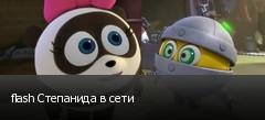 flash Степанида в сети
