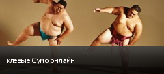 клевые Сумо онлайн