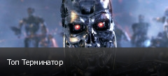 Топ Терминатор