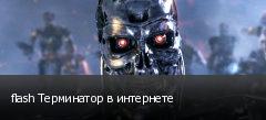 flash Терминатор в интернете
