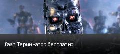 flash Терминатор бесплатно