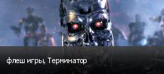 флеш игры, Терминатор