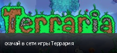 скачай в сети игры Террария
